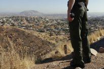 Messico, la nuova frontiera della criminalità: il mercato illegale della vaniglia