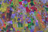 """Cosmo SkyMed, i 10 anni della costellazione di satelliti """"Made in Italy"""" per proteggere la Terra: oggi al Maxxi La diretta dalle 10"""