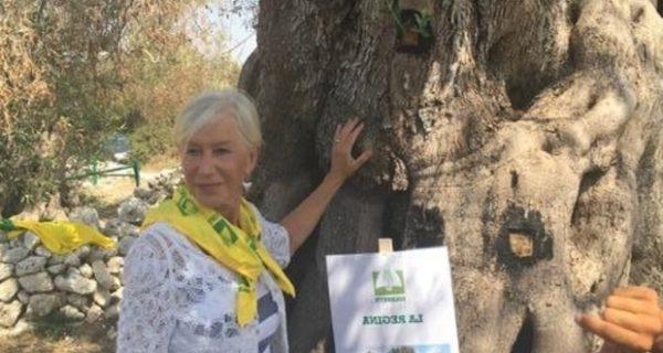 «Save the olives»: Helen Mirren in prima fila per difendere gli ulivi in Puglia