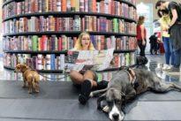 """Nel segno dello spagnolo e delle Marche, ecco il nuovo Salone del Libro di Torino, """"Il gioco del mondo"""""""