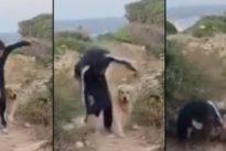 Gianni Morandi, brutta caduta mentre fa jogging con il cane. Video